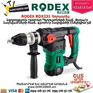RODEX RDX231 Հորատիչ 1300վտ